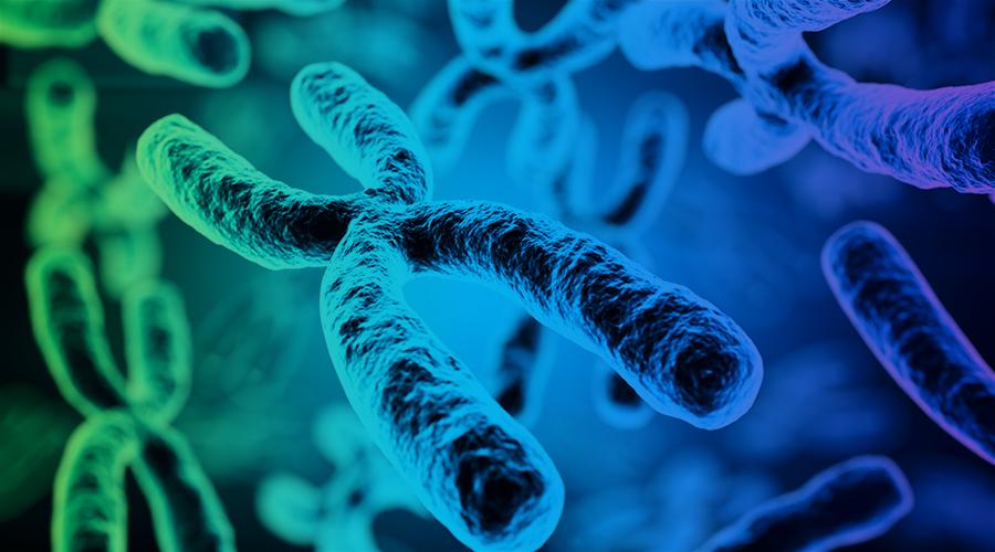 Care sunt cauzele defectelor genetice?