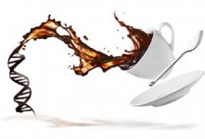 coffee-gene-bun